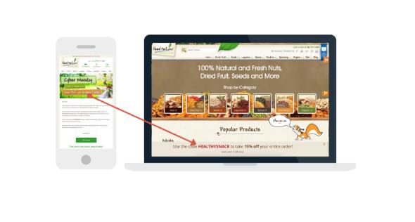 Screenshot of example email & desktop messaging