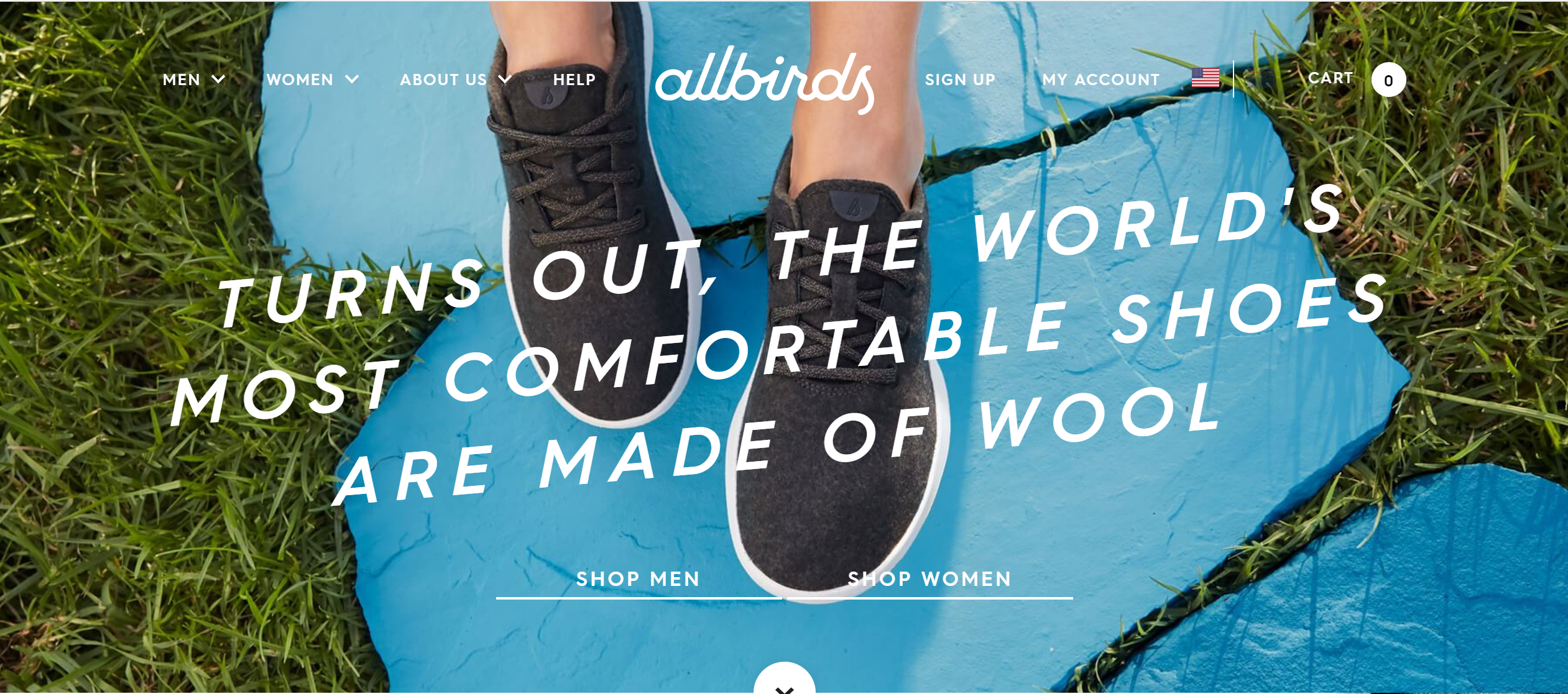 allbirds hero image.png