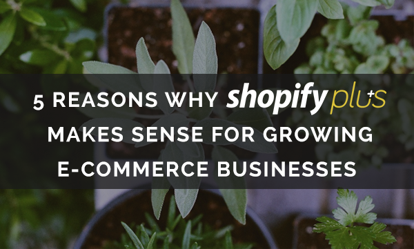 Shopify_plus_makes_sense_for_growing_ecommerce_businesses