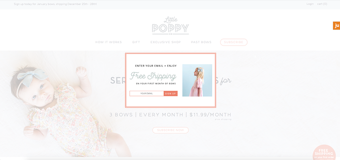 little-poppy-co-ecommerce-promotion.png
